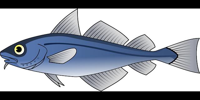 nakreslený tuňák