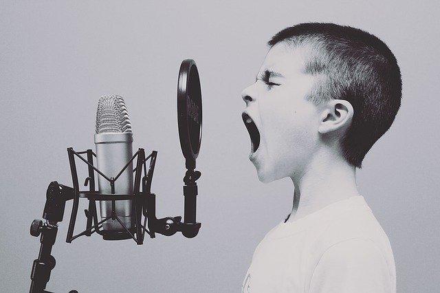 Zpívající chlapec