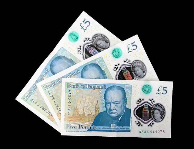 bankovky, peníze, 5 liber